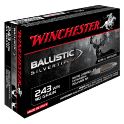 243 Win 95gr Silvertip Winchester x20